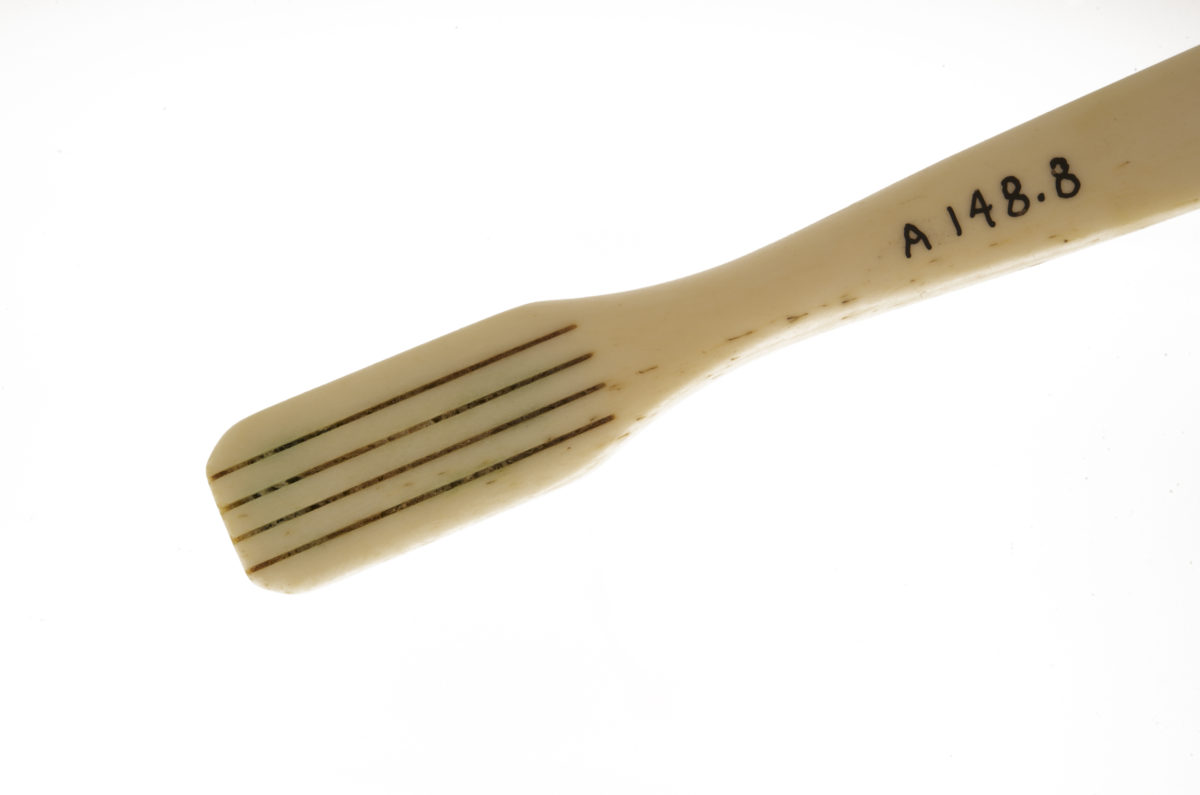 Ward's bone-handled toothbrush