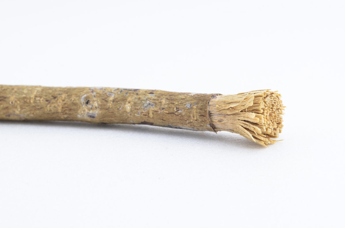 Neem, Siwak or Miswak chewing stick